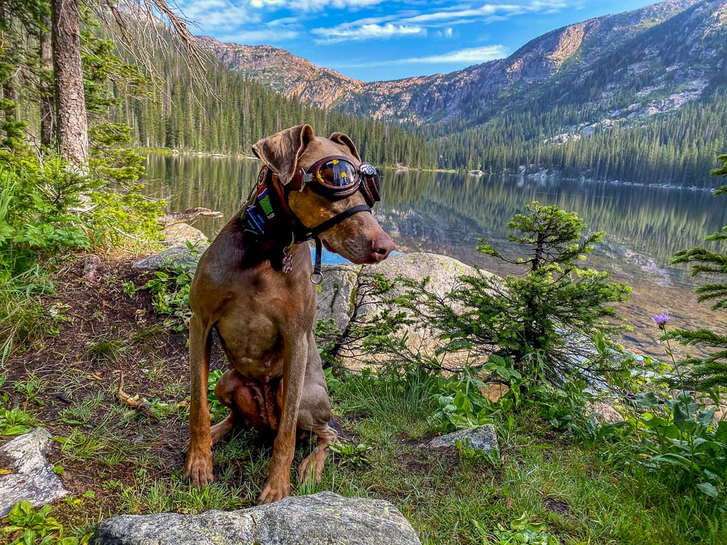 annie at timberline lake